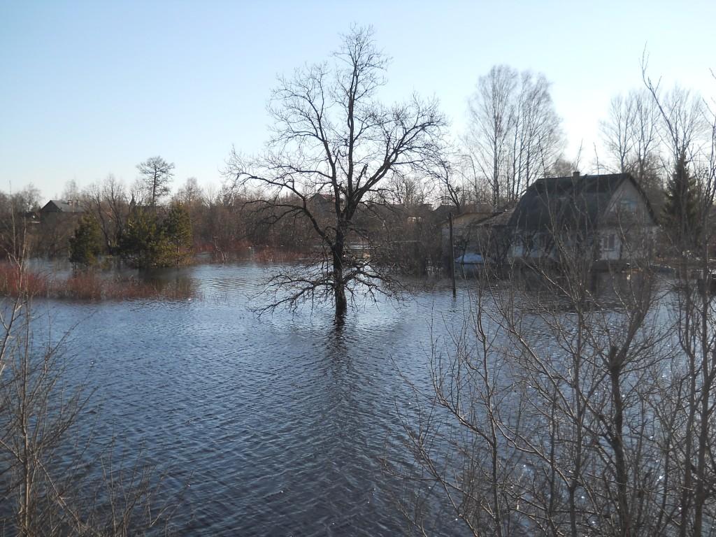 дом апрель.2011 029